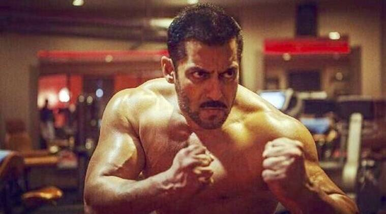 Image result for salman khan sultan