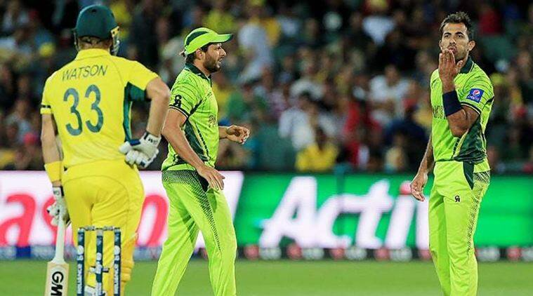 Wahab Riaz, Shane Watson, Happy Birthday, Birthday wishes, Video cricket, cricket sledging video, cricket