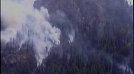 Uttarakhand: 48 hours later, forest fire in Gangotri area continues to rage