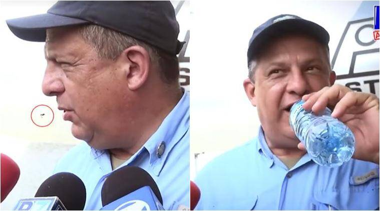 costa rica, Luis Guillermo Solís Rivera, costa rica president eats insects accidentally, president swallows insect accidentally, costa rican president swallows wasp accidentally, viral videos, trending news, viral news, Indian express