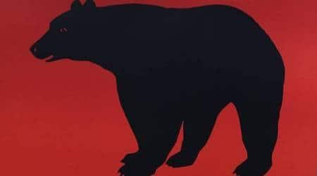 Chhattisgarh, Chhattisgarh bear attack, Chhattisgarh wild bear, wild bear attack, Chhattisgarh news