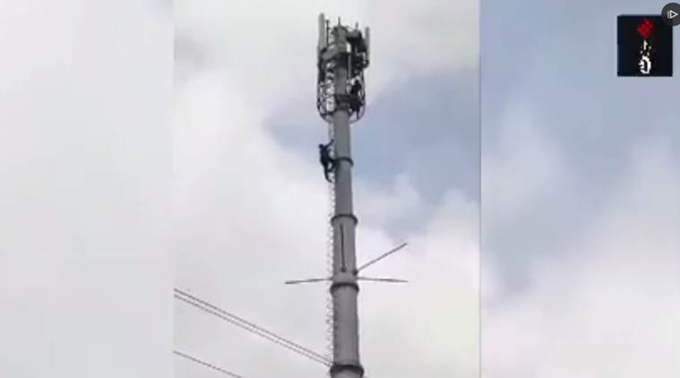 boy climbs tower, ahmedabad, reliance jio tower, boy rescued from tower, indian express