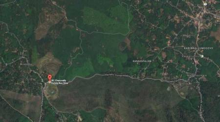Kerala government clears plot for Sabarimalaairport