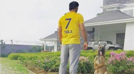 MS Dhoni wears CSK colours after ban ends; see pic