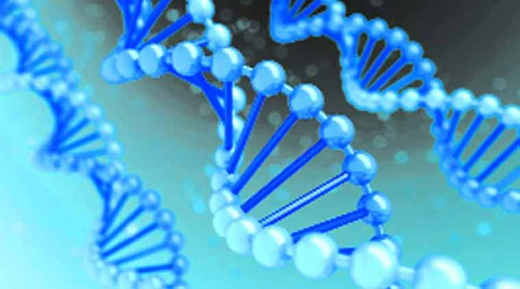 research paper on dna testing Genetics essays / test design for k owens research paper the most recent discoveries and researchesin the field of genetics: dna cloning i am a.