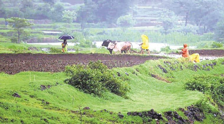 farm loan waiver, maharashtra farmers, maharashtra loan waiver, agriculture, crop loan, india news, indian express