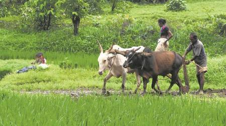 Doubts raised over loan waiver benefit for 10 lakh farmers