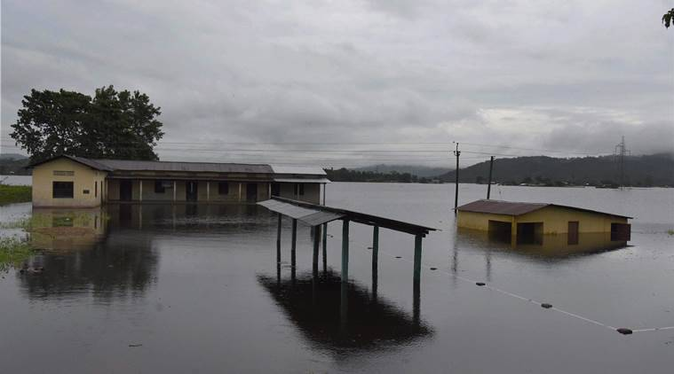 Assam floods, fllods in Assam, kaziranga national park, Kaziranga park inundated,