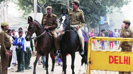 horses banned in west delhi