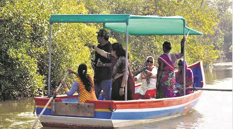 fisherwomen turn mangrove tour guides, Vengurla in Sindhudurg district, United Nations Development Programme (UNDP) , Chief Conservator of Forests (Mangrove Cell), Mumbai News, Indian Express News