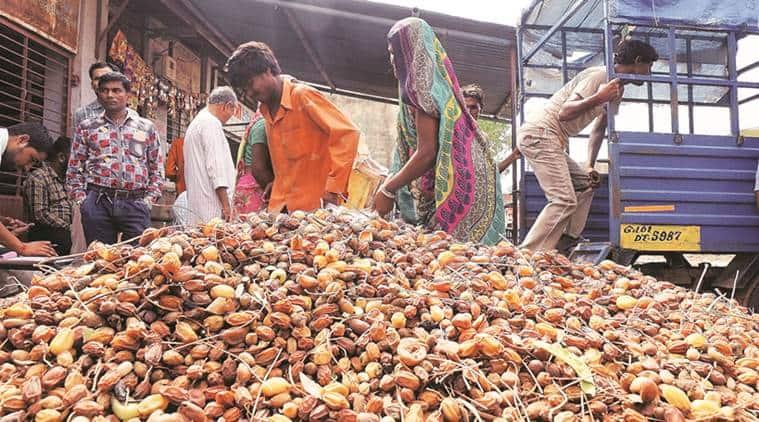 nimboli, neem fruit, Laxmiben Ajitsinh Dabhi, india news