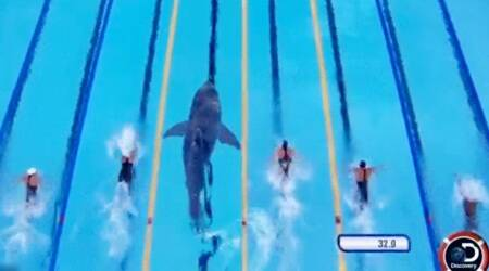 Michael Phelps races a shark! But wait, he actually didn't, and Twitterati are mad