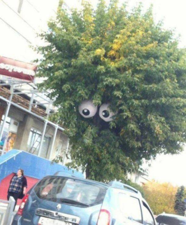 20 genius acts of VANDALISM that are absolutely amazing