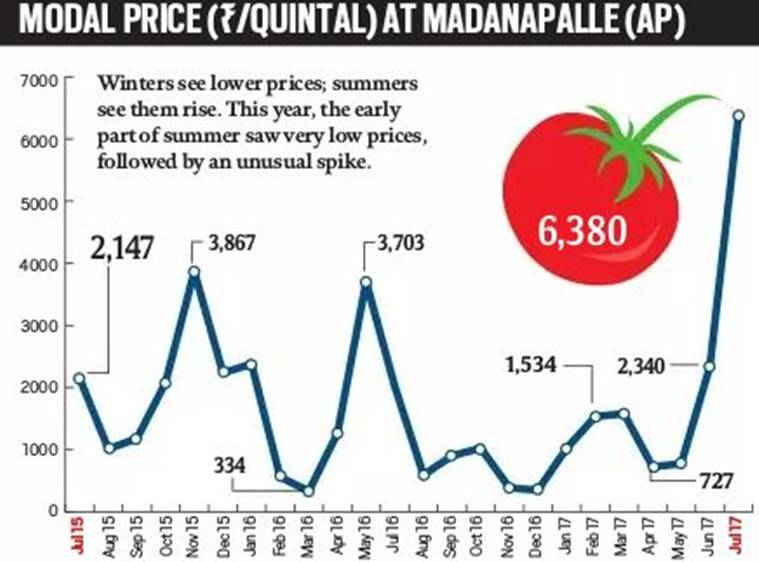 Tomato prices, Kharif crops, Summer crops, Farmers, Agriculture sector, Tomato market price, Indian Express