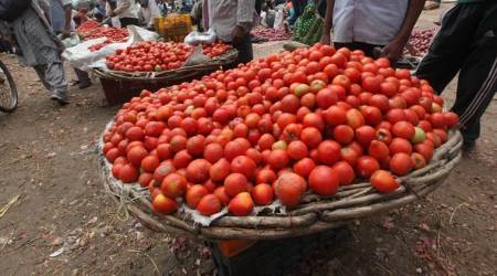 Seeing red: why is tomato onfire?