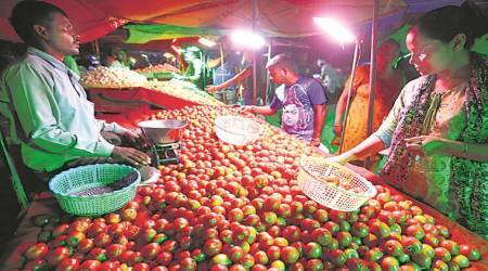 'Tomato prices likely to decline in next 15 days'