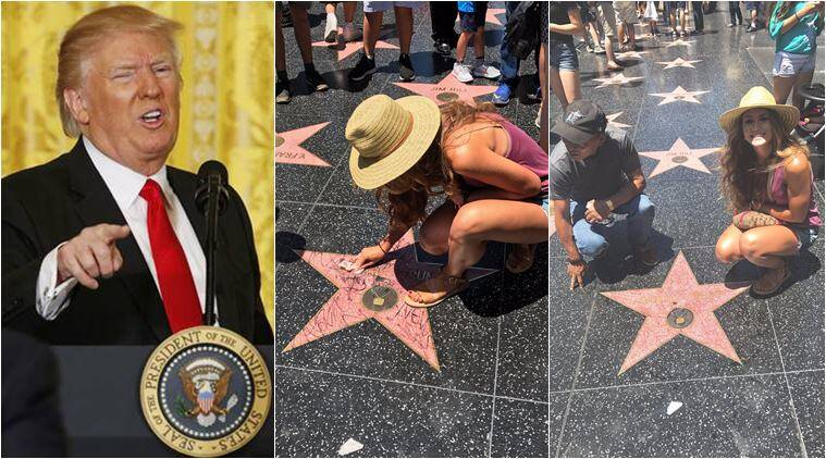 donald trump, trump hollywood star, trump hollywood walk of fame, trump star cleaning meme, raised right meme, respect for my president meme