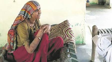 Una one year later: 'If cow is your mother, why does she become ashudh after shedies?'