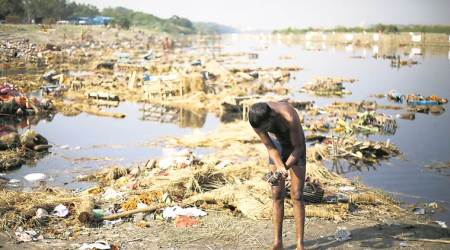 After NGT ire, DJB draws up plan to 'improve' Yamuna