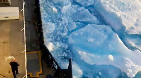 Arctic voyage captures global warming impact on ice, animals in these astounding pictures