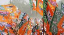 BJP eyes AIADMK, Tamil issues to help Tamil Nadu foray