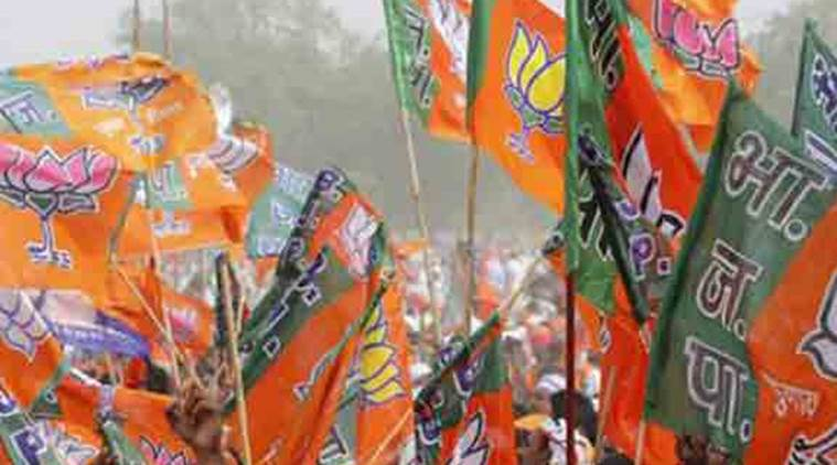 BJP, AIADMK, Tamil Nadu Election, TN Election, Tamil Issues, India News, Indian Express, Indian Express News