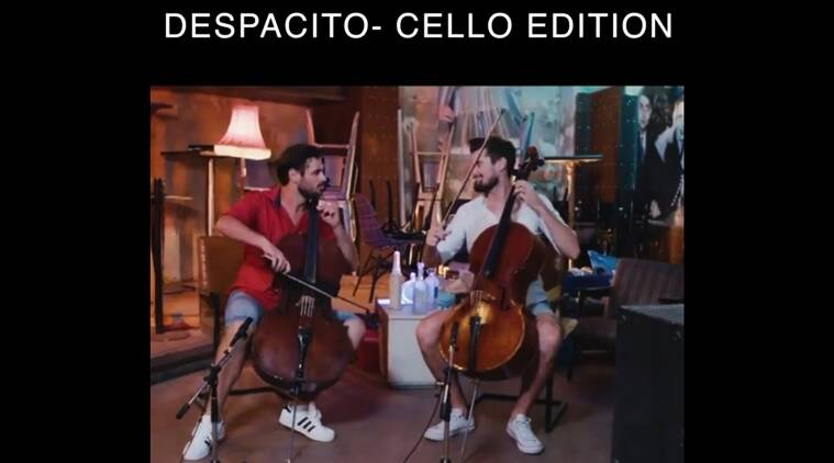 despacito, despacito covers, despacito best covers, despacito cello covers, despacito instrumental covers, despacito latest covers, indian express, indian express news