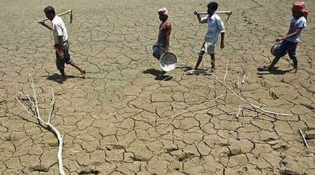 Uttar Pradesh, Drought, UP drought, UP government on drought, UP weather, Rajive Kumar, UP Chief Secretary, india news, indian express news