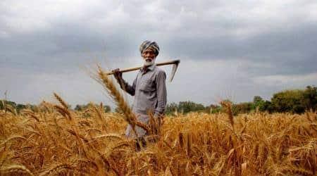 farmer loan waiver, online registration for loan waiver, aadhaar number linked to farmers loan waiver, aadhar number linked to farmers, indian express news