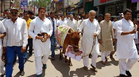 Chhattisgarh: Congress stages protest over deaths of cows inRaipur