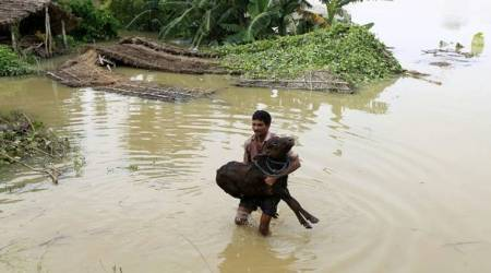 Heavy rains, floods continue to batter Assam, West Bengal, Bihar; several dead, millions displaced