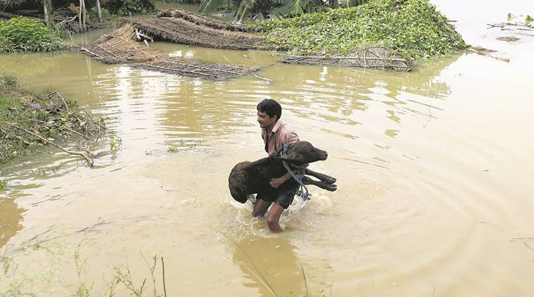 uttar pradesh, flood, UP flood, UP rain, gorakhpur flood, UP flood death, UP flood relief, yogi adityanath, indian express news, india news
