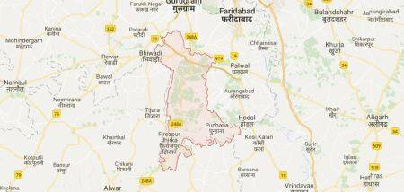 Mewat DC issues posting order of forest officer, revokes it hours later