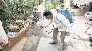 Pune: After hospitals, now civic survey finds mosquito-breeding sites incolleges