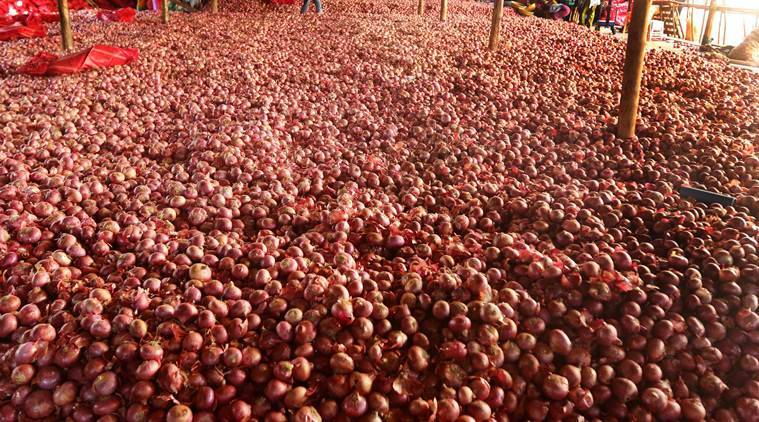 onion Prices, onions prices in India, Price of onions in India, India news, national news, latest news, India news, national news, latest news