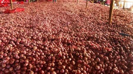 Onion prices: Centre seeks report from Maharashtra govt on role ofcartels