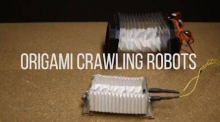 Scientists develop low-cost crawling robot using origami technique