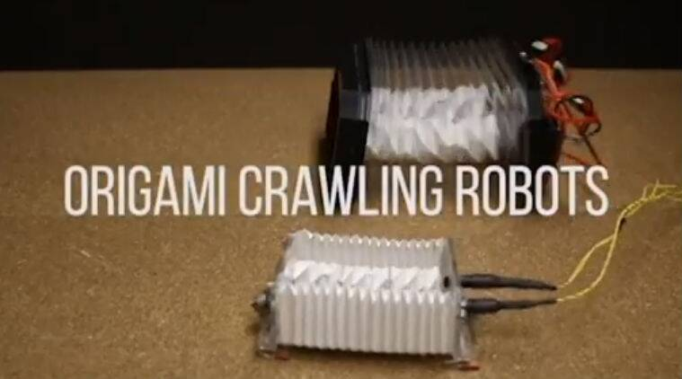 Origami, robot, University of Illinois, bacteria, robotics