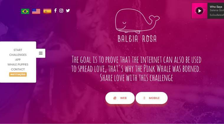 Pink Whale Challenge, Balei Rosa, Blue Whale Challenge