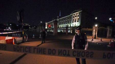 Scotland Yard make second arrest in Buckingham Palace attack