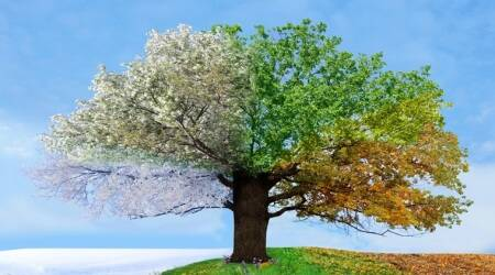 Karma Sutra: Seasons change, and so do life'sphases