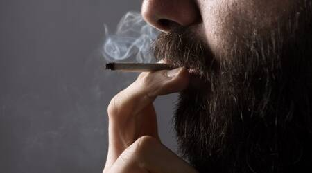 Marijuana use may up death risk of from hypertension