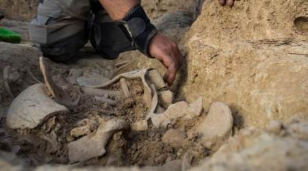 Spanish archaeologists dig up more dead bodies from civil war mass graves