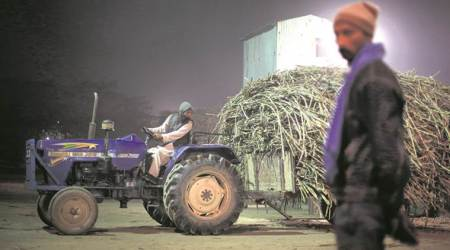 A tough balancing act: The new bitter North-South divide in India's sugar industry
