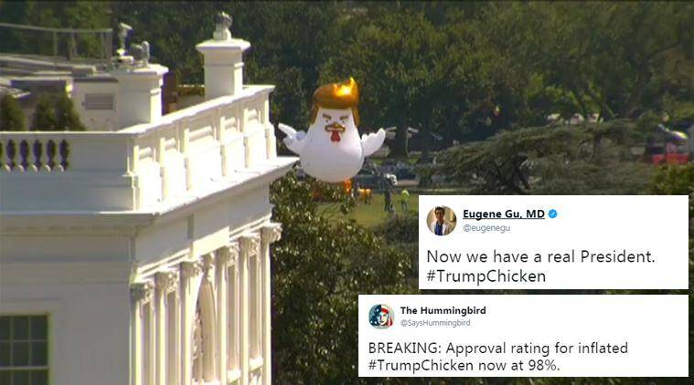 donald Trump, Trump chicken, inflatable trump chicken, trump chicken white house, trump chiken protest, Taran Singh Brar, Trump chicken protest, trump chicken ballon white house, viral news, indian express