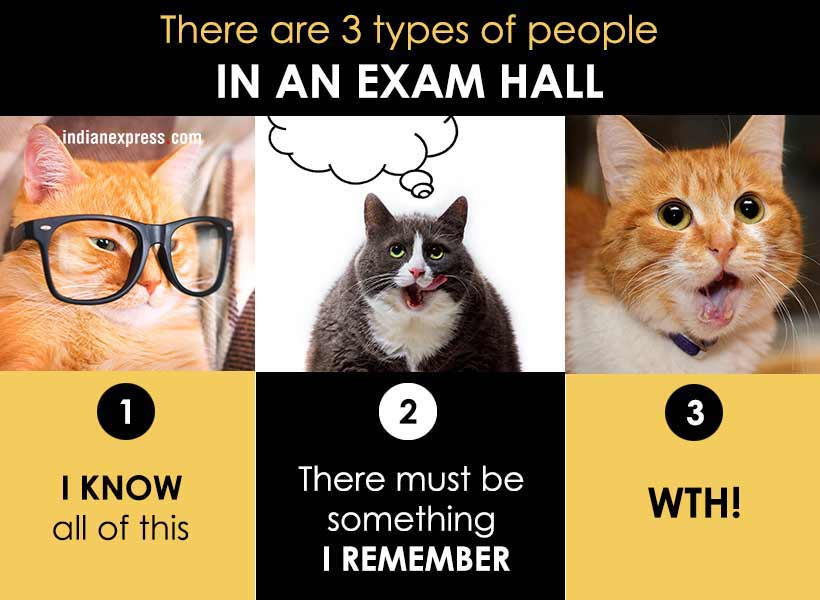 122?w=610 photos how you live your life in funny cat memes the indian express