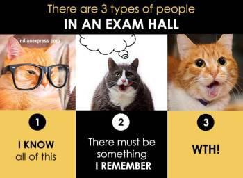 How You Live Your Life In Funny Cat Memes Lifestyle Gallery News The Indian Express