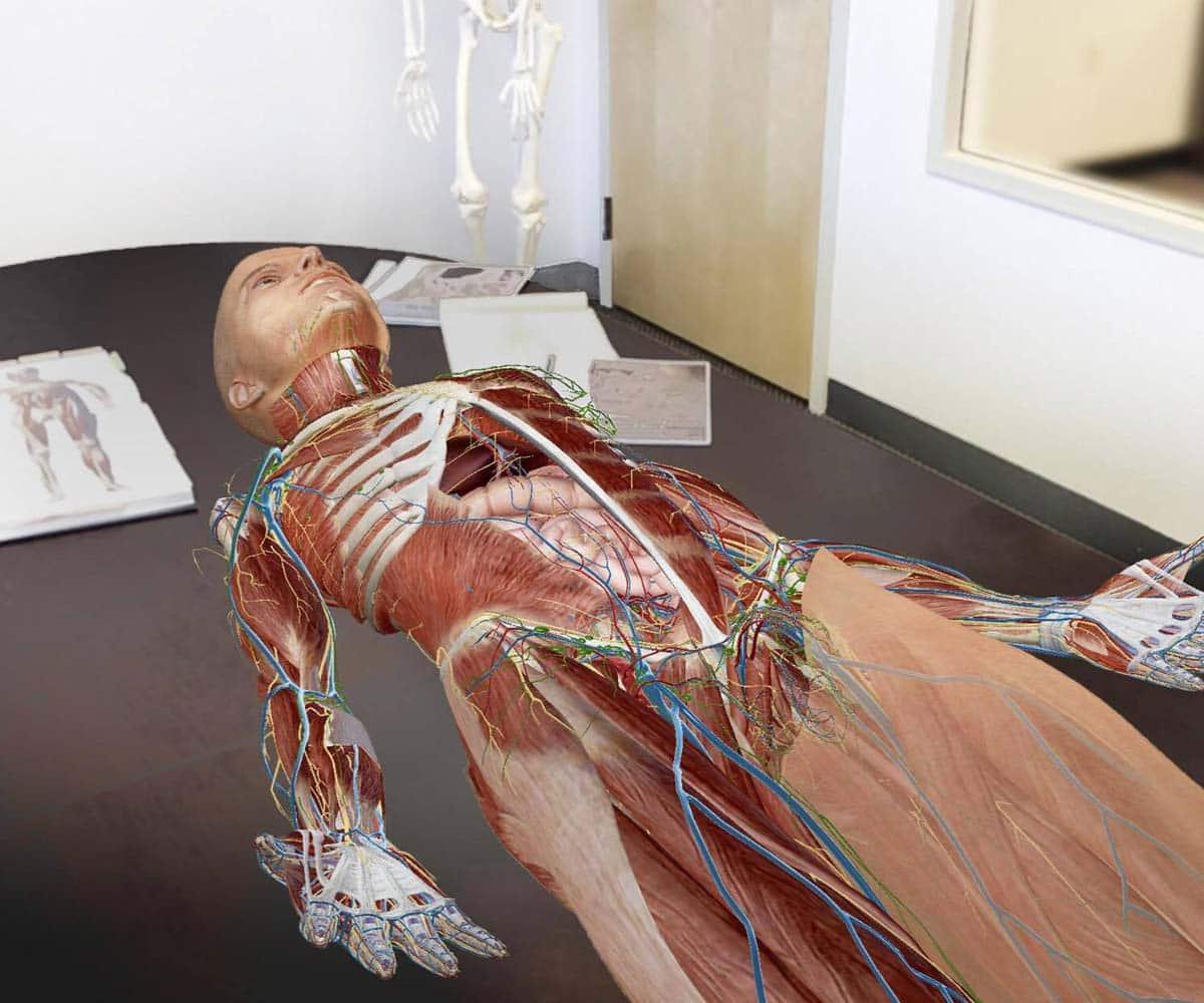 Apple IOS 11 Release AR Apps Human Anatomy Atlas