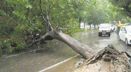 Heavy rains disrupt normal life in parts of Bengaluru