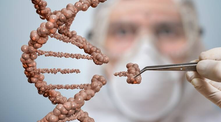 DNA to construct face, new research in science, DNA development, Research on DNA, latest findings in DNA, Indian express, Indian express news
